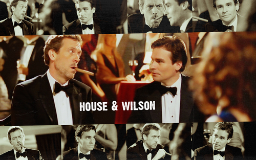 Dr. House Hintergrund called House & Wilson - All In