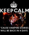 Keep Calm 'cause Vampire Diaries will be back in 4 days - damon-and-elena fan art