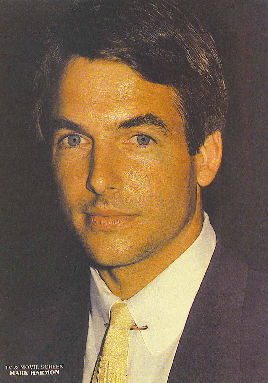 Mark Harmon - Photo Colection