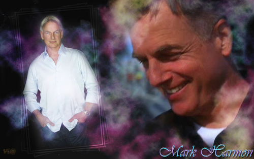NCIS wallpaper titled Mark Harmon