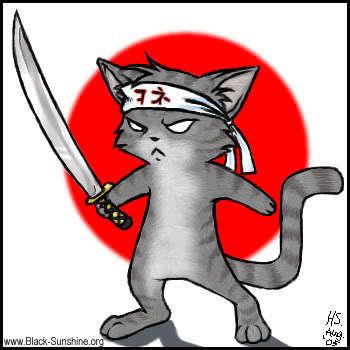 Ninja Kitties
