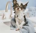 Oh No...Bath Time :D