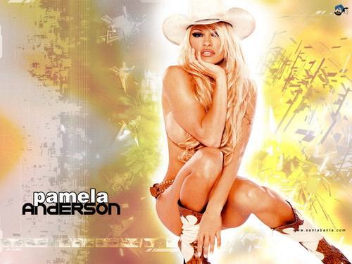 Pamela Anderson wallpaper possibly containing skin titled Pamela Anderson