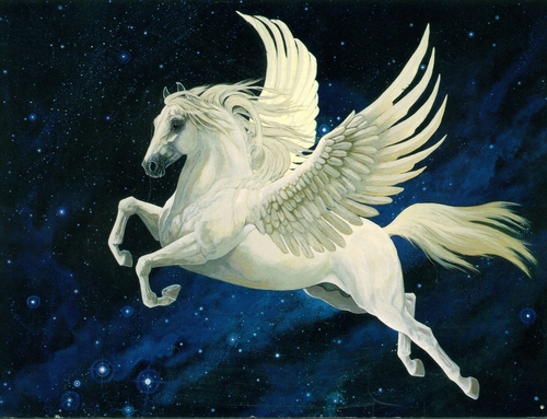 Pegasus images Pegasus HD wallpaper and background photos