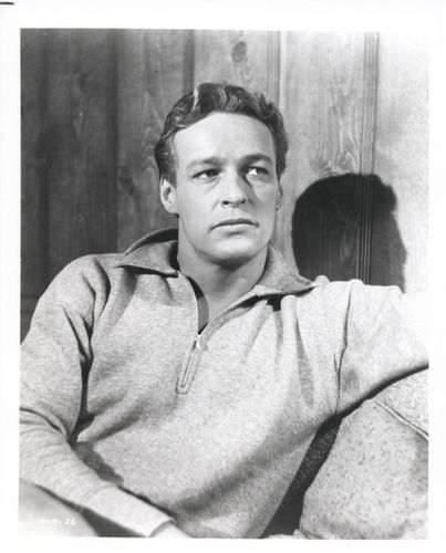 Russell Johnson as The Professor - gilligans-island Photo