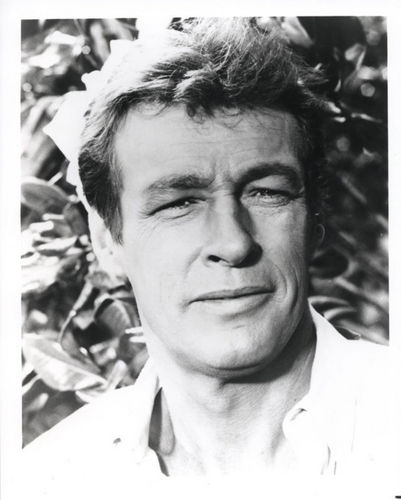 Russell Johnson as The Professor