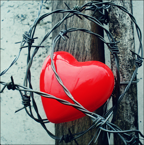 Great Love Hurts !!! LH Images True Love Hurts Finding Your Soulmate Wallpaper  And Background Photos