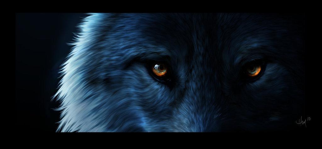 Werewolf images WereWolf wallpaper and background photos