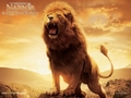 aslan the great - aslan photo