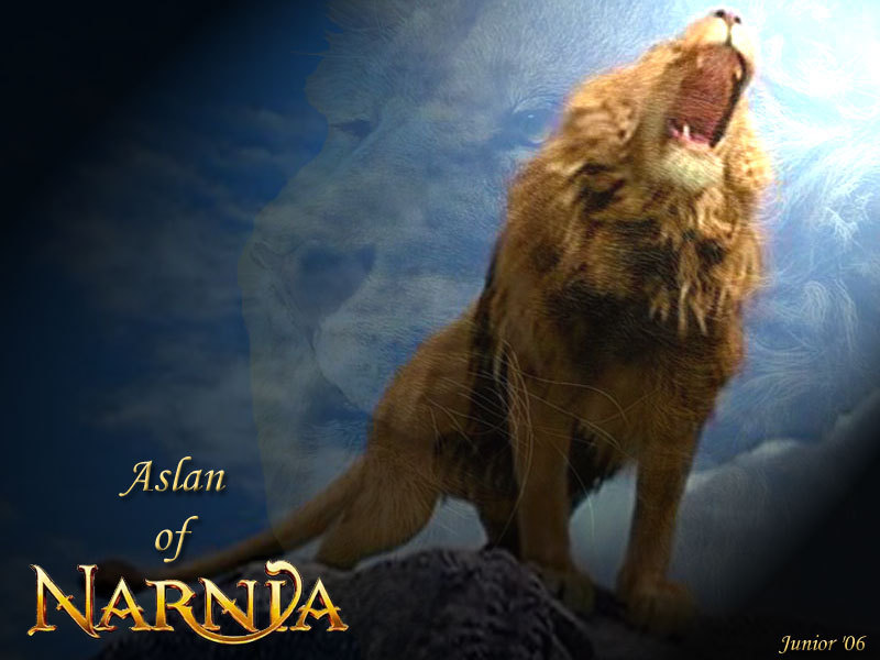 Aslan Images Aslan The Great Hd Wallpaper And Background Photos