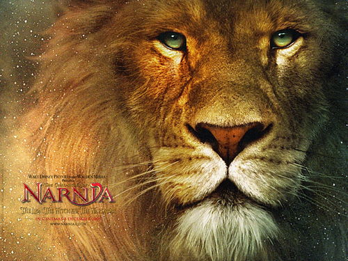 aslan the king of narnia - aslan Wallpaper