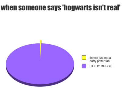 don't ever say hogwarts isn't real :D