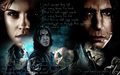 sev-mione hell - hermione-and-severus wallpaper
