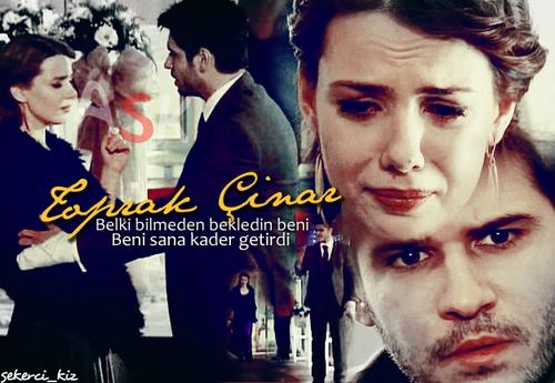 Lale Devri - Toprak & Cınar Photo (21989989) - Fanpop  Lale Devri - To...