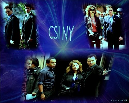 CSI NY // TEAM