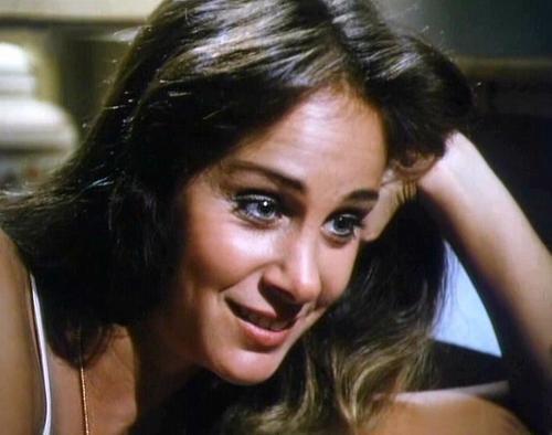 Dynasty-Pamela Bellwood