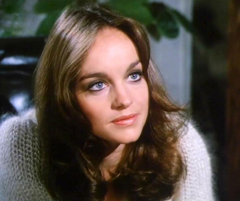 Pamela Sue Martin photo
