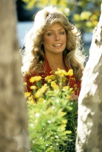 Farrah Fawcett as Jill Munroe