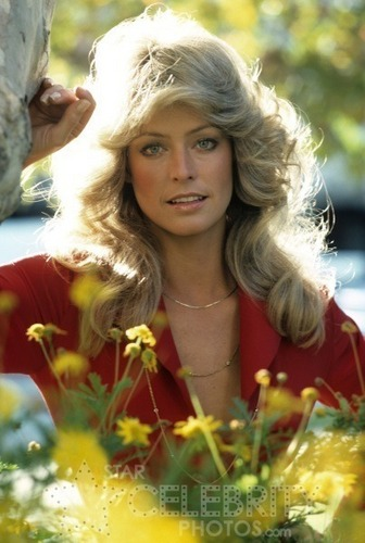 Charlie's Angels 1976 wallpaper probably with a bouquet and a portrait called Farrah Fawcett as Jill Munroe
