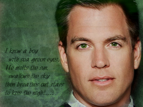 Michael Weatherly wallpaper with a portrait called Green Eyes....