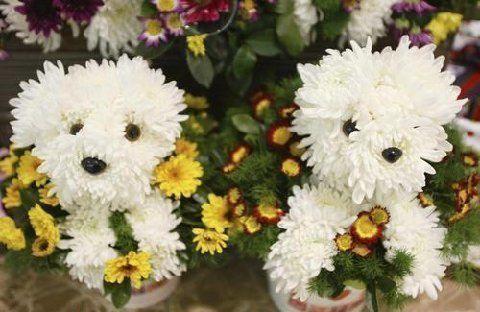 I amor flowers....