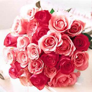 I 愛 flowers....