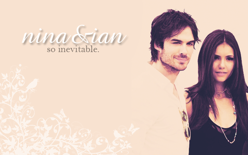 Damon&Elena and Ian&Nina wallpaper containing a portrait entitled Inevitable.