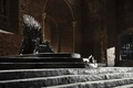 Iron Throne - game-of-thrones photo