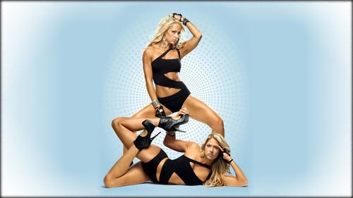 wwe divas fondo de pantalla entitled Kelly Kelly , Michelle McCool