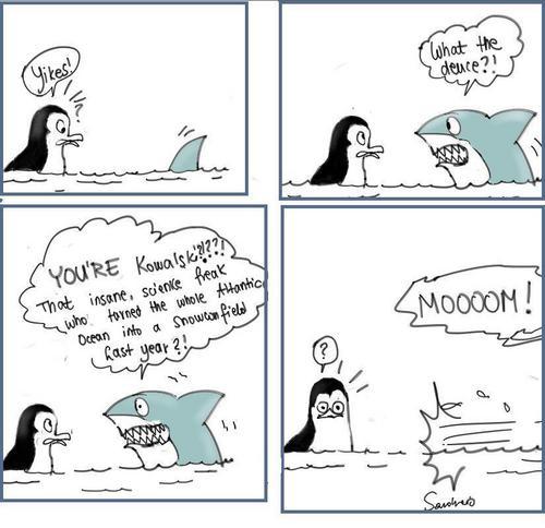 Maxell the Sharkie
