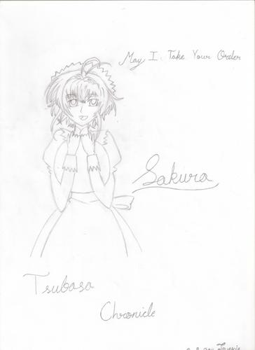 My Drawing of : Sakura from Tsubasa Chronicle