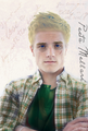 Peeta Mellark - hunger-games-guys fan art