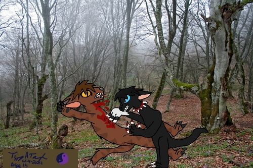 RIP Tigerstar! toon no mercy!!!!! O.o