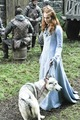 Sansa & Lady - game-of-thrones photo