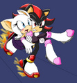 Shadow and Rouge - sonic-and-friends photo