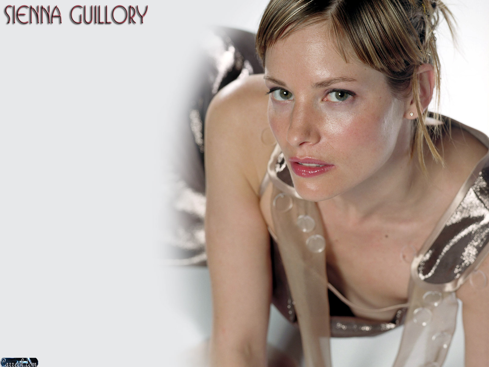 Fakes sienna guillory