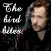 Sirius Black photo containing a portrait entitled Sirius