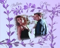 Stella & Mac among flowers - csi-ny wallpaper