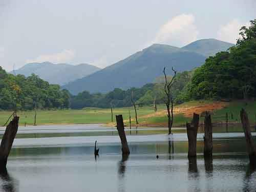 Kerala wallpaper entitled Thekkady