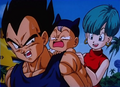 Vegeta, baby Trunks, and Bulma - prince-vegeta photo