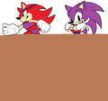amanda and vincent - random-sonic-girls-and-boys photo