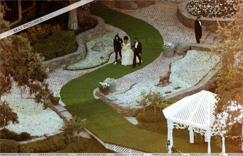 elizabeth's wedding দিন in NEVERLAND ranch,queen_gina