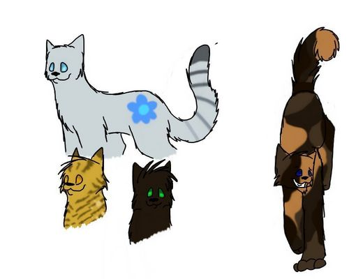 Make Your Own Warrior Cat! hình nền entitled my warriors