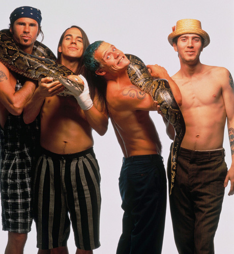 Red Hot Chili Peppers wallpaper possibly with a boa, a python, and a constrictor called rhcp