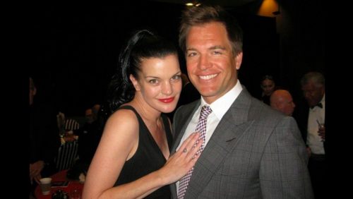 17th Annual Steve Chase Humanitarian Awards Gala - pauley-perrette Photo