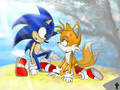 Are you okay? - sonic-and-tails photo