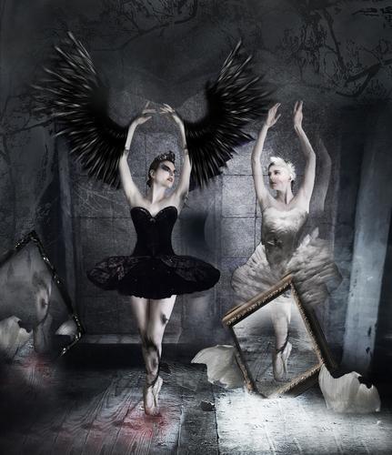 Black Swan Art♥