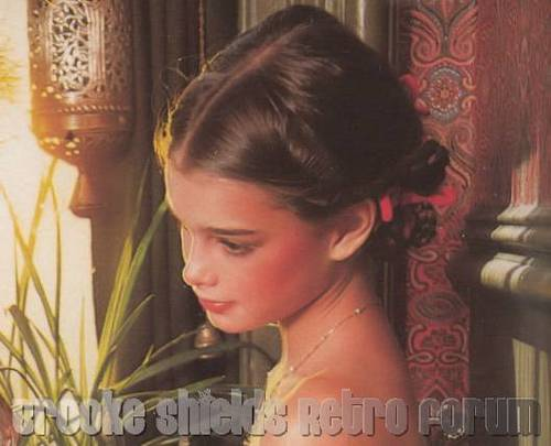 brooke shields fondo de pantalla possibly containing a bouquet and a portrait entitled Brooke Shields