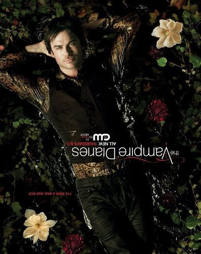 the vampire diaries série de televisão wallpaper possibly with an indian hemp, a japanese maple, and a japanese wistaria called Damon Poster (upside down so we can look at his pretty face properly)