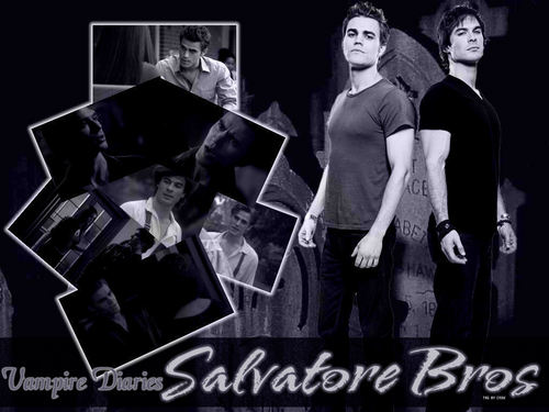 Damon and Stefan Salvatore پیپر وال called Damon&Stefan ✯